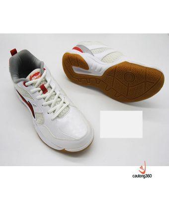 Giày Cầu Lông Lining AYTJ021-1